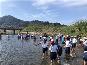 川の水生生物調査