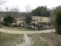 枯渇した湧水地(合志市須屋)